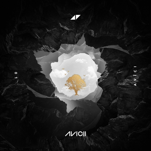 Avicii ::: Without you