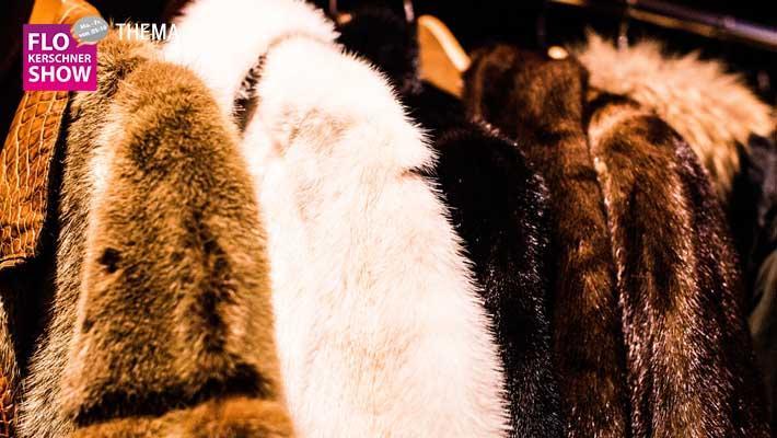 Achtet ihr beim Klamottenkauf darauf, dass es pelzfrei ist?