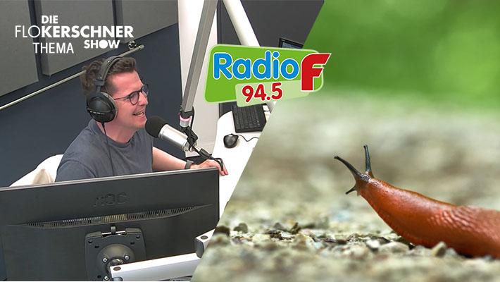 Wir verbinden Malter weiter zu Radio F und lachen uns tot!