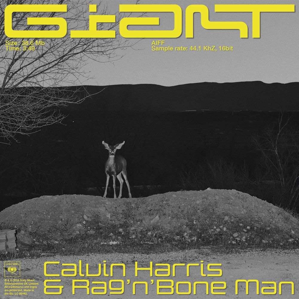 Calvin Harris ::: Giant