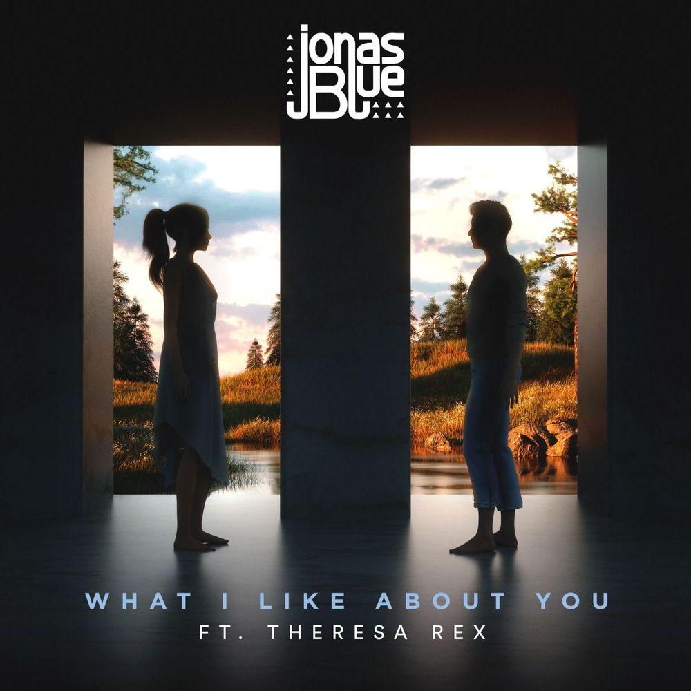 Jonas Blue ::: What I like about you